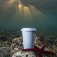 Nature Reusable Cups made from 100% Compostable PLA